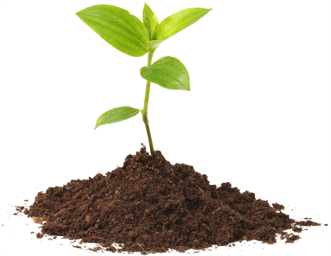 Contact Us Anagnostou Production And Packaging Of Soils Compost Substrates
